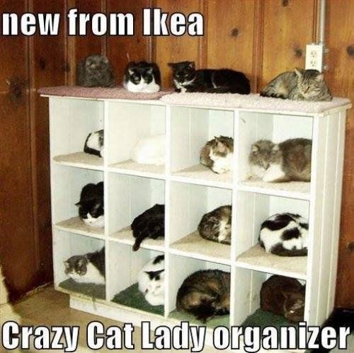 Cat_Lady_Organizer