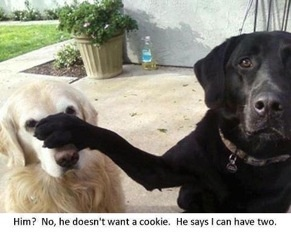 2 Cookies