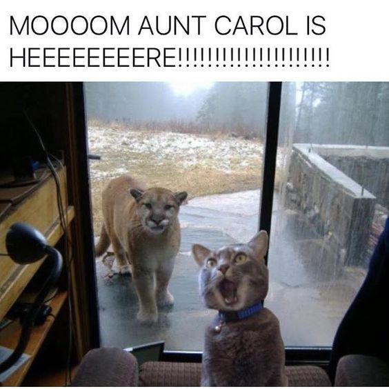 Aunt Carol.jpg