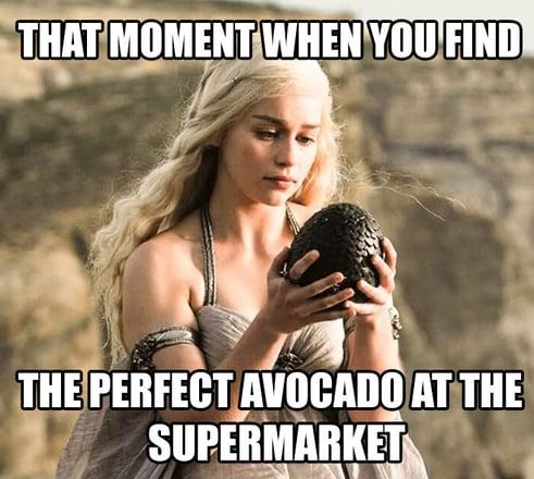Avocado-2