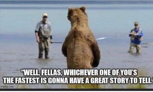 Bear and Fisherman
