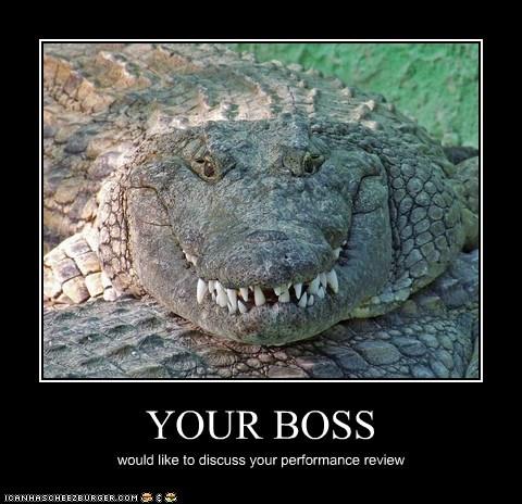 Boss-1.jpg