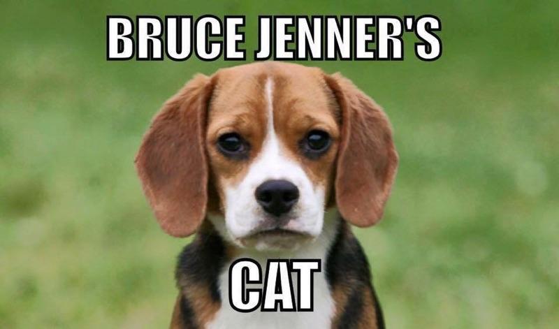 Bruce_Jenner