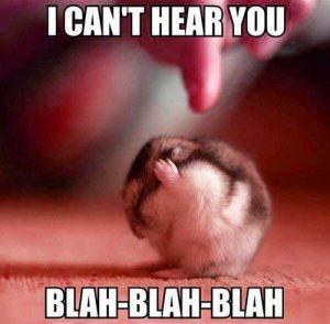 Can't Hear You.jpg