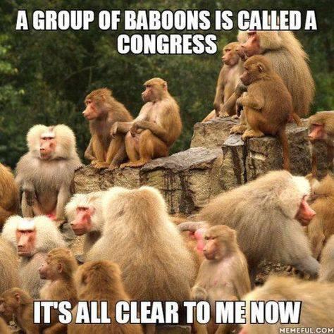 Congress-1