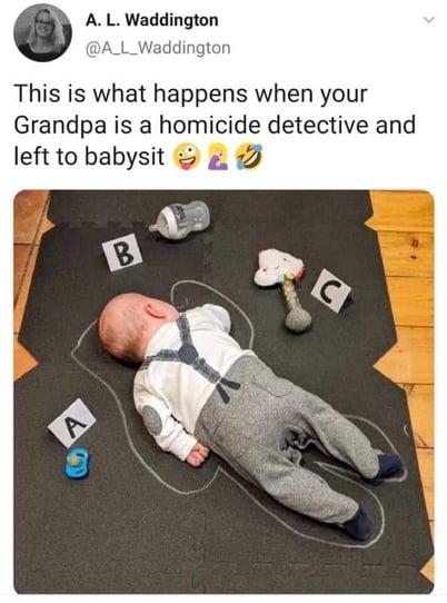 Detective Babysit