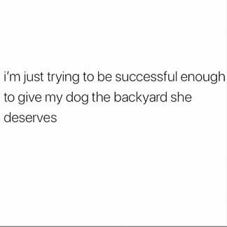 Dog Backyard