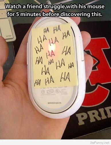 Funny-mouse-prank