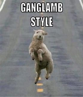 Ganglamb Pic.jpg