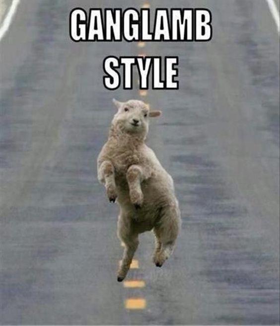 Ganglamb_Pic.jpg