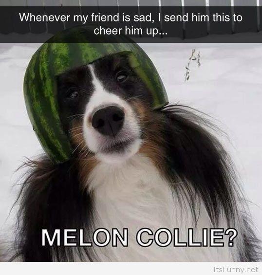 Mellon Collie