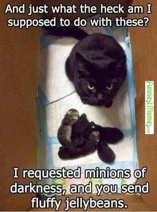 Minions.jpg