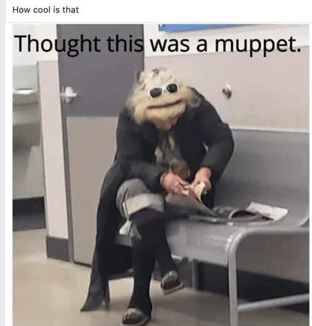 Muppet Lady