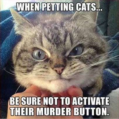Murder Button-1