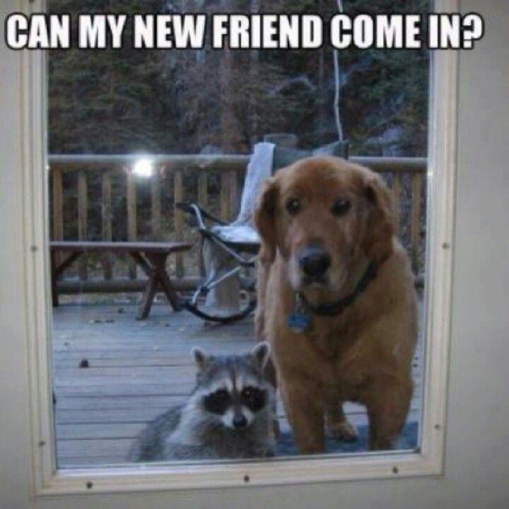 New friend.jpg