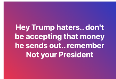 Not Your President