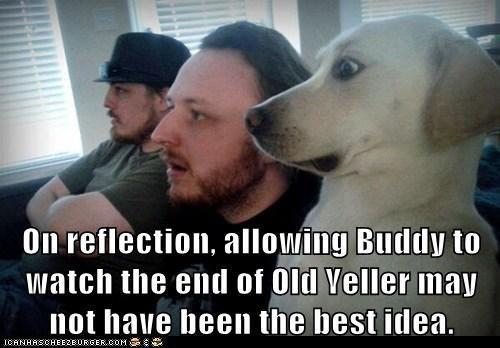 Old_Yeller.jpg