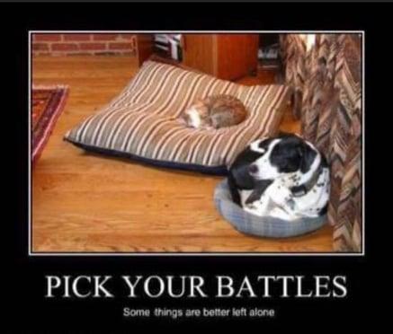 Pick battle
