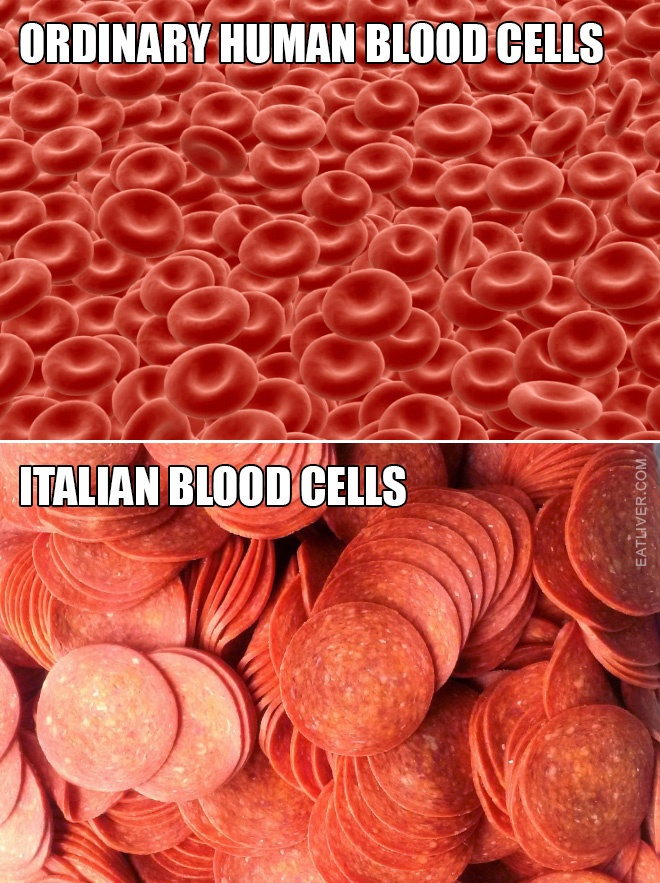 blood-cells-2