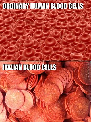 blood-cells.jpg