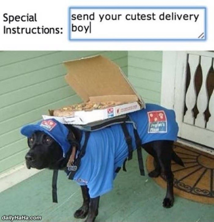 cutest_delivery_boy.jpg