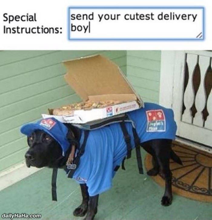 cutest_delivery_boy.jpg