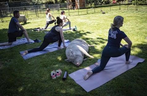 me-doing-yoga