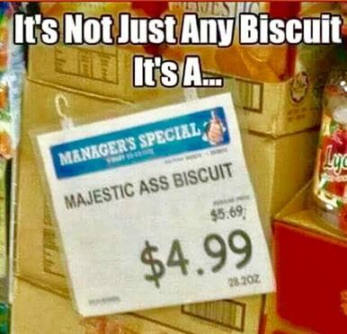 not-just-any-biscuit-1