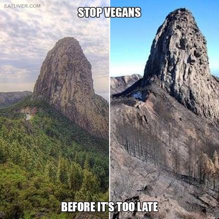 stop-vegans